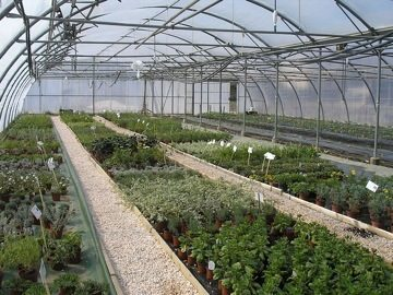 formation bsta productions horticoles