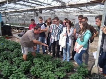 formation productions horticoles